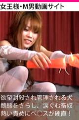 女王様・M男動画サイト 2