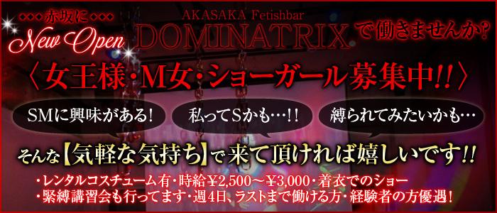 赤坂Fetishbar『赤坂Dominatrix』