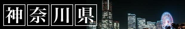 神奈川(8)